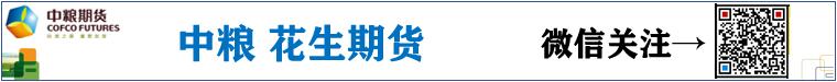 中粮雷电竞app官网期货